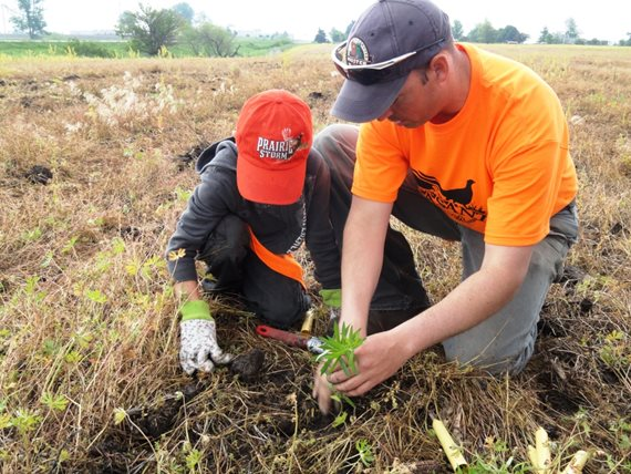 Quail Forever and Pheasants Forever chapters host community events to educate youth and their families about the value of pollinators to humans and pheasants through interactive upland habitat projects.