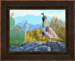 Framed Canvas - Springtime Sentinel by Jim Kasper