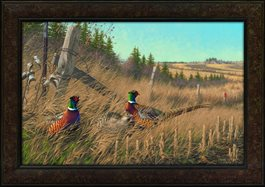Framed Giclee Shelterbelt Pheasants by Michael Sieve