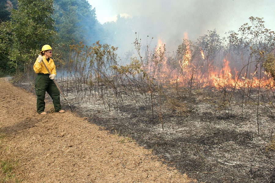 Elsa Gallagher, Missouri state coordinator, helping conduct a prescribed burn