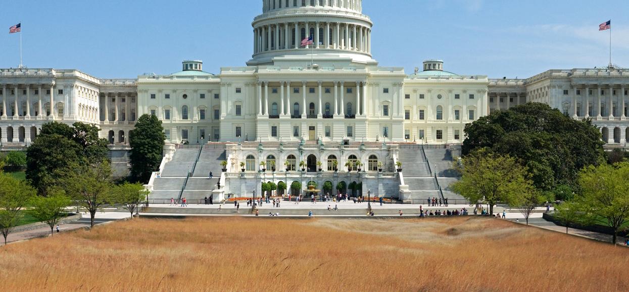 Capitol Hunters