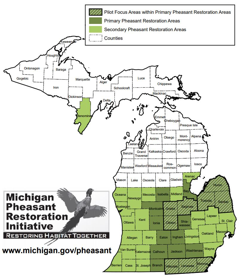 Michigan Pheasant Restoration Initiative