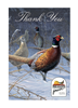Pheasants Forever Thank You Cards 10/set 2/envelopes